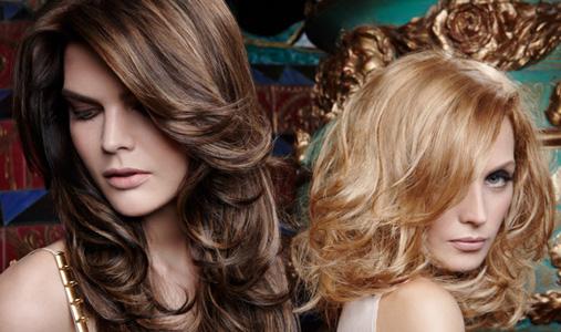 Partial Highlights Brown Hair hair services - escape beauty